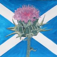 The Thisle of Scotland: il cardo, simbolo della Scozia