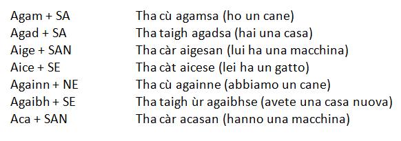 verbo avere gaelico
