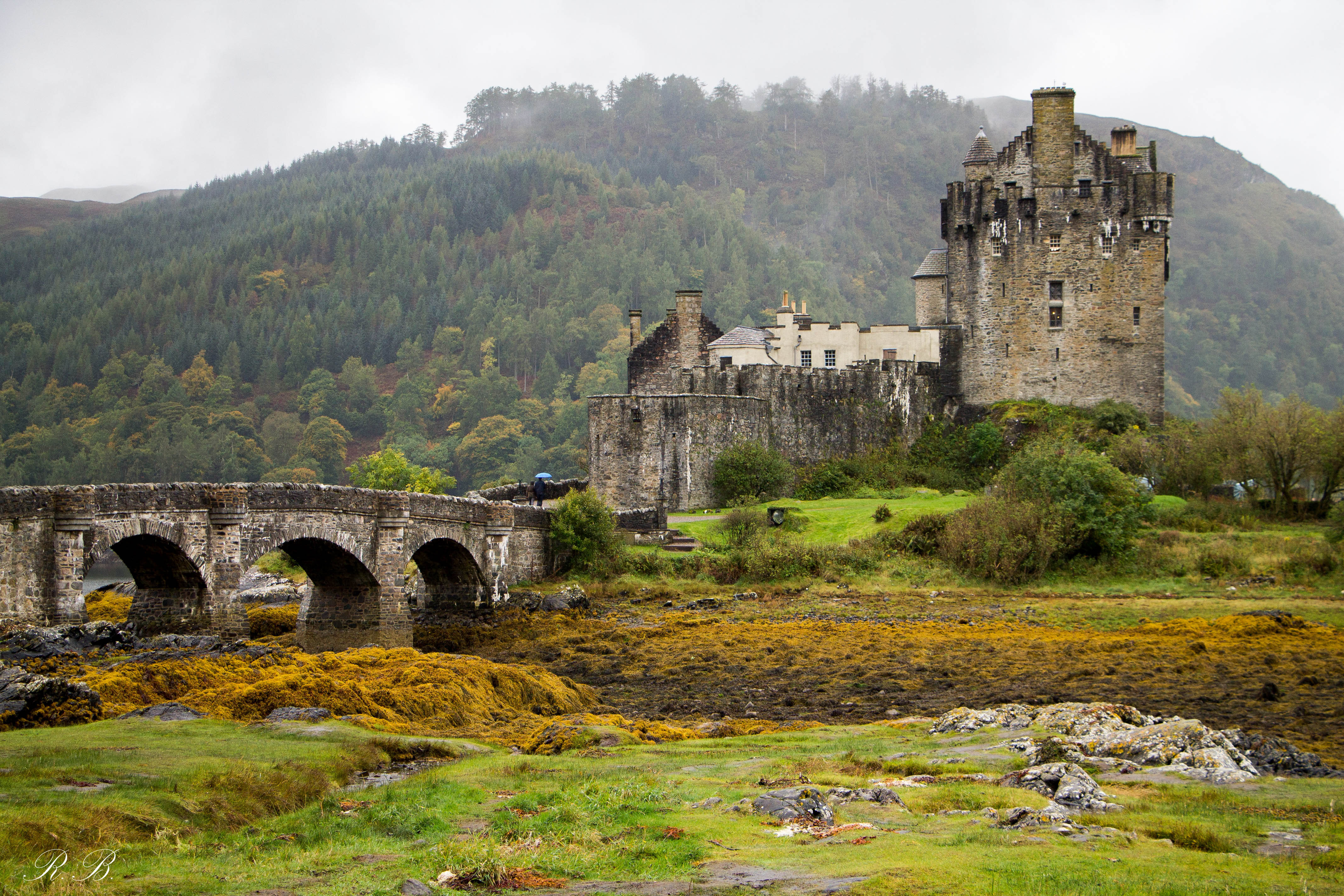 Eilean Donan Castle Scozia Beatrice Roat
