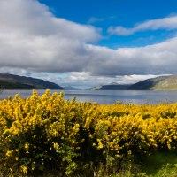 Loch Ness, il lago più famoso di Scozia: storia, leggende e cose da non perdere