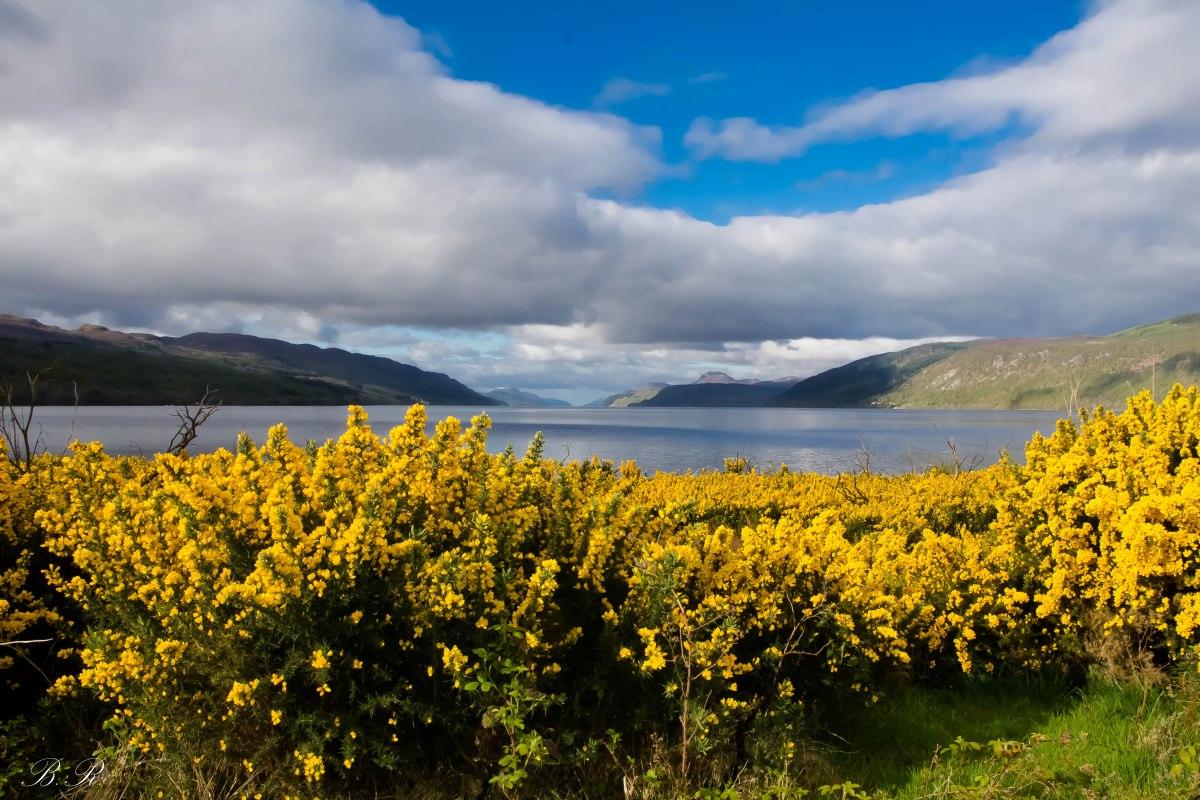 Consigli su come organizzare un perfetto viaggio in Scozia