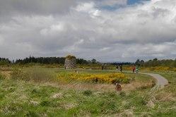 Drumossie Moor