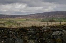 I dintorni di Drumossie Moor
