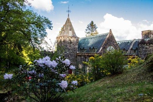 La Saint Conan's Kirk con la fioritura dei rododendri