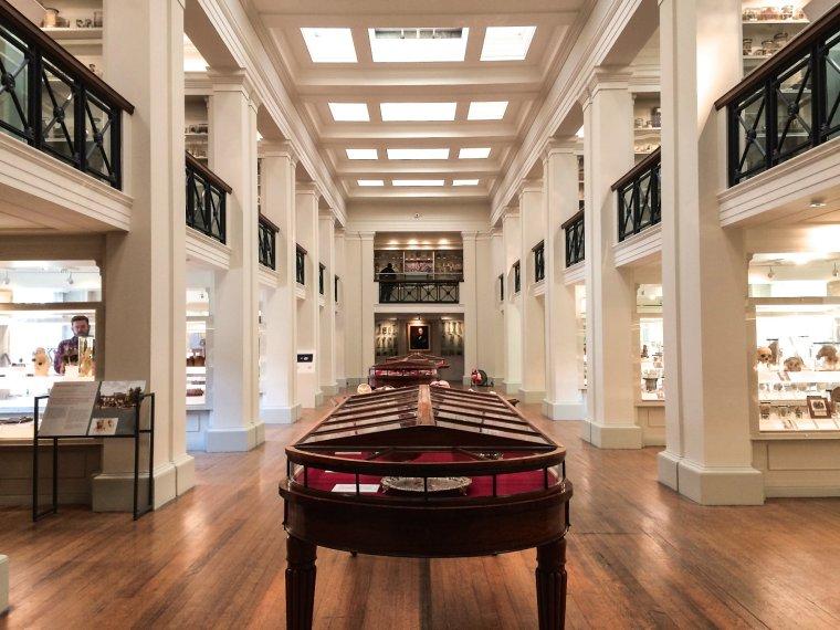 the-wohl-pathology-museum