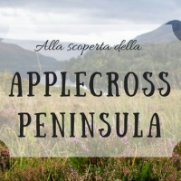 Shieldaig, Applecross e Bealach Na Ba: una giornata di emozioni nel più bel angolo di Scozia