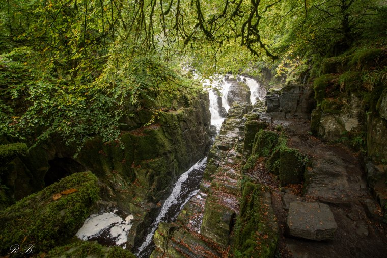 Dunkeld-TheHermitage-Scozia-Nelcuoredellascozia-BeatriceRoat