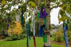 Nastri colorati legati agli alberi