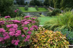 Hercules Gardens