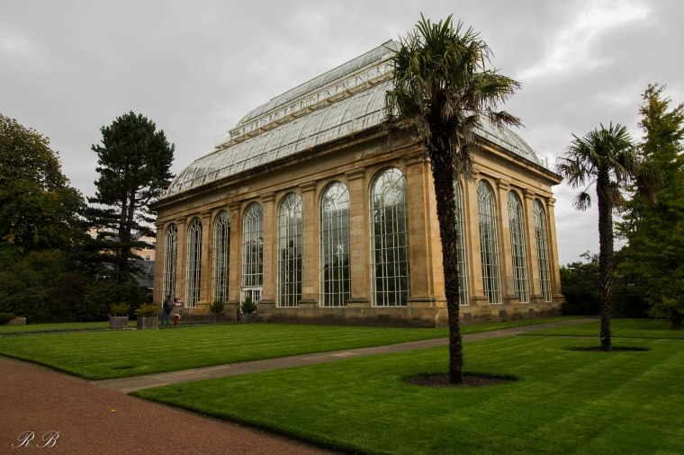 Glasshouse_Edinburgh_BotanicGarden_BeatriceRoat