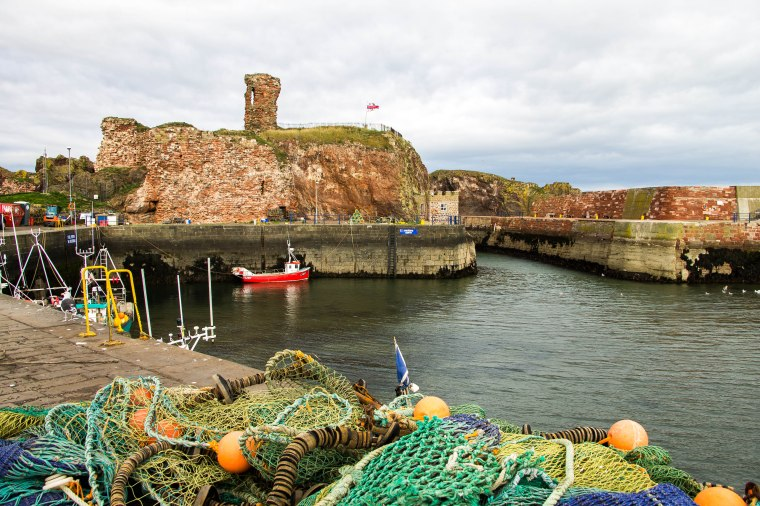 Dunbar_Castle_BeatriceRoat