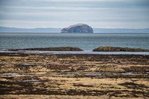 BassRock-EastLothian-Scozia-Nelcuoredellascozia-BeatriceRoat