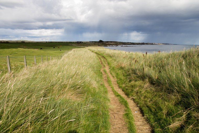 FifeCoastalPath-Fife-Scozia-Nelcuoredellascozia-BeatriceRoat