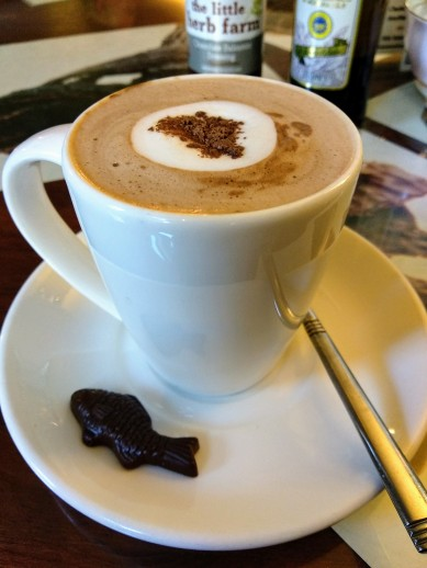 Cocoa-tree-pittenweem