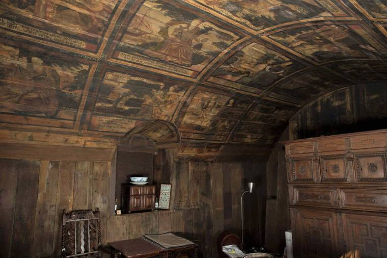 culross_project_reveal_painted_ceilings_0318_a4d3b1d2372d193767395f89c3d28c77