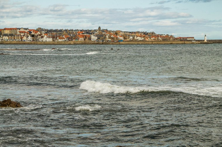 Anstruther-Fife-BeatriceRoat