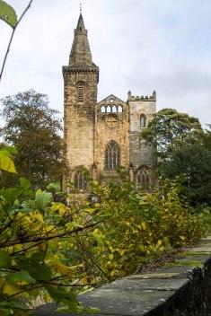 Vista sulla cattedrale dal parco