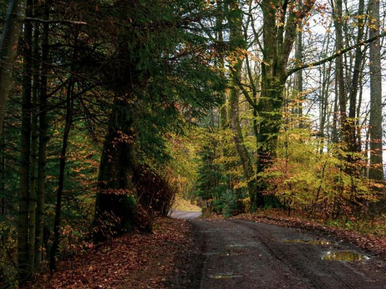 killin-sentiero-lungo-fiume-dochart-berightback