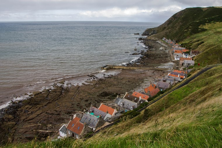Crovie-BeatriceRoat