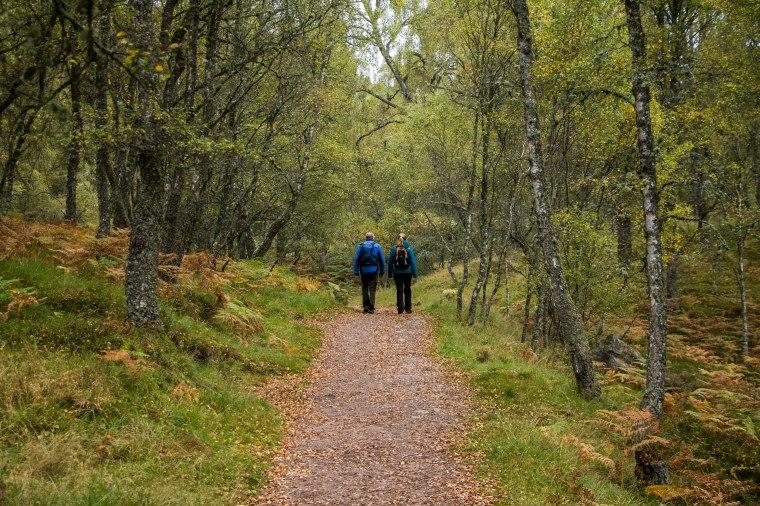 Craigiellachie Naturale Reserve-Aviemore-Scozia-nelcuoredellascozia-BeatriceRoat