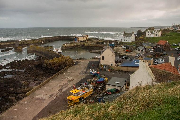 St.Abbs-Scotland-BeatriceRoat