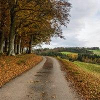 Autunno Scozzese: un meraviglioso viaggio di gruppo nel sud della Scozia