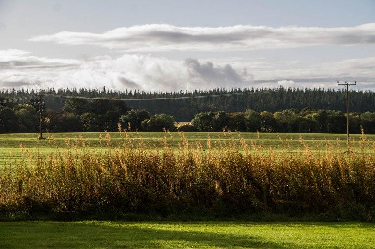 Brodie-Scozia-Nelcuoredellascozia-BeatriceRoat