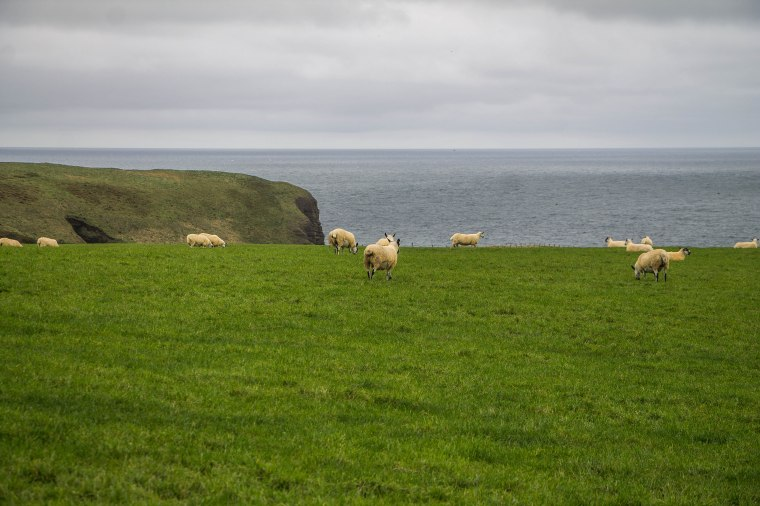 Pennan-Crovie-Scozia-Nelcuoredellascozia-BeatriceRoat